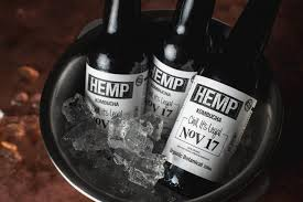 Is This The Most Millennial Product of 2018… Australian Hemp Kombucha
