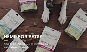 True Leaf CBD Wellness For Pets Goes Global
