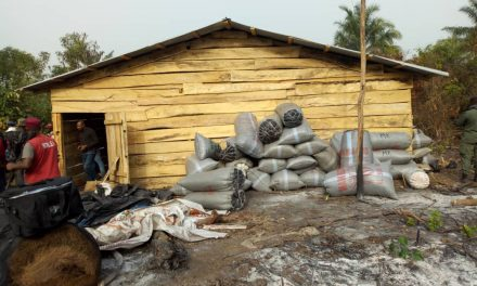 Nigerian Drug Law Enforcement Agency Discover 10,201 Bags of Cannabis In Makeshift Warehouse