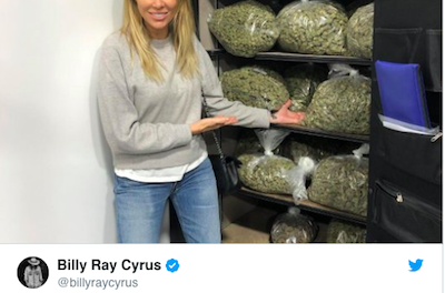 The Cyrus Family, They Sure Love Their Weed !
