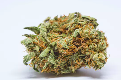 Herb Says These Are The Strongest Strains On The Plant
