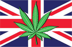 Forget Brexit – The People's Vote. This Is The Important One – 'Let us smoke WEED' Nearly 20,000 Brits sign petition for PEOPLE'S VOTE – on cannabis