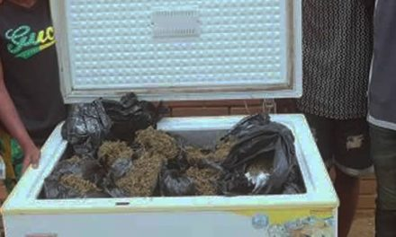 Nigerian Weed Dealers Nabbed With Chest Freezer Full Of Weed
