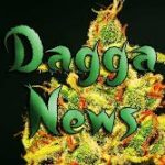 New Weed Products Abound In South Africa