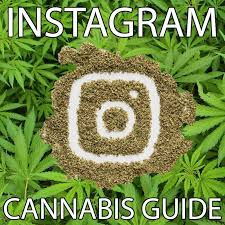MJ Biz Report Notes That Social Media Companies Are Cracking Down On Cannabis Again