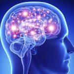 Marijuana makes your brain more plasticky