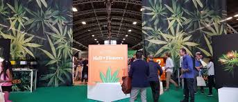 Article – Cannabis Now: Hall of Flowers Cannabis NowPhotos Gracie Malley for Cannabis NowINDUSTRY EVENTSCannabis Brand Wars: 'Immersive Experiences' Dominate Hall of Flowers