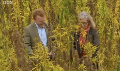 UK TV Show Countryfile Tackles UK Hemp Issues & Lack of Govt Direction