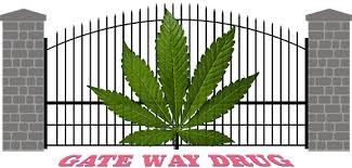 "Biden, ""I'm Not Sure If Marijuana Is A Gateway Drug"""
