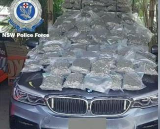 Australia: Man arrested near Byron Bay with '$1 million in cannabis'