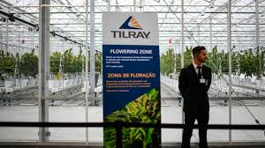 March 3: Tilray slides 14% to pressure broader cannabis sector after earnings disappoint