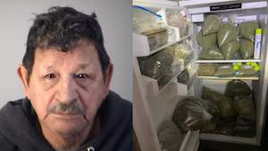 Florida: Detectives make largest marijuana bust in Lake County history worth $2.3 million, deputies say