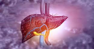 CBD liver study to inform FDA regulation gains support for deployment next month