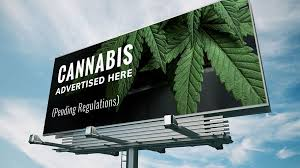 Gen Z Marketing Dos and Don'ts in the Cannabis Industry