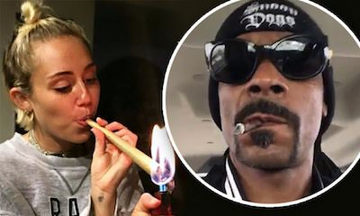 More Celebs Who Have Admitted to Smoking Weed