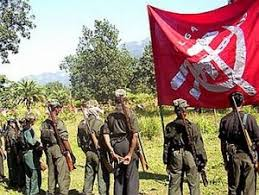 India: Naxalism-hit areas used for illegal cannabis cultivation: Officials