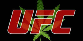 UFC Set To Loosen Up Strict Rules On Fighters Smoking Marijuana