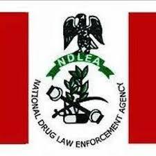 Nigeria's National Drugs Law Enforcement Agency (NDLEA)  Seized 1,735.7kg In 2019-2020