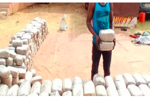23 bags of Indian hemp recovered from P'Harcourt warehouse