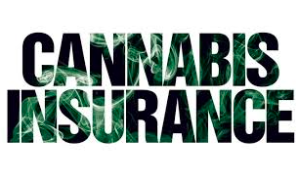 What's smoking hot in cannabis insurance claims trends