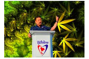 Thai Cannabis Sector Worth $US660 Million By 2024 Say Analysts
