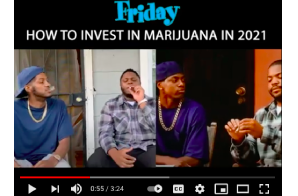 HOW TO INVEST IN MARIJUANA (weed) STOCKS IN 2021 : Friday Skit