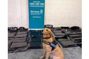 Polish national in his 20s arrested after $2.7 million worth of weed found at Irish ferry terminal by Marley the dog !