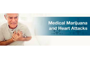 Article: Marijuana And Heart Attacks: What New Research Reveals