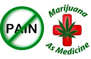 Doctors Advised Not To Prescribe Cannabis for Chronic Pain