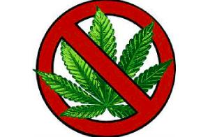 MJ Biz Article: Where in America is marijuana still entirely illegal?