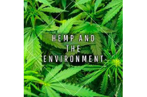 Volteface Article: Exploring the Environmental Benefits of Hemp
