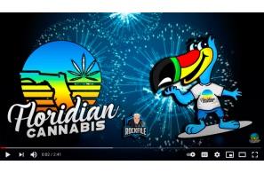 Floridian Cannabis Video Update: Apr 7, 2021