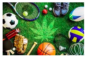 How Cannabis Laws Impact Professional Sports