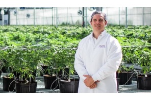 Cannabis producer Hexo seeks $1.2B capital raise to fund expansion plans