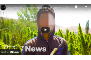 Vice – Big Business vs Drug Dealers: The Battle Over Lebanon's Weed Industry