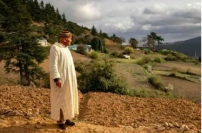 Morocco looks to fear-free hashish farms