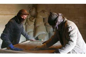 Lebanon's crisis-hit farmers turn to growing hashish