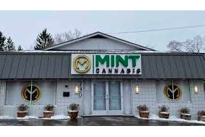 Mint Cannabis to open three more dispensaries, cultivation center in Michigan