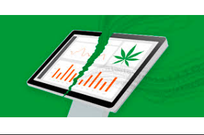 Cannabis is video data security's next big industry investment