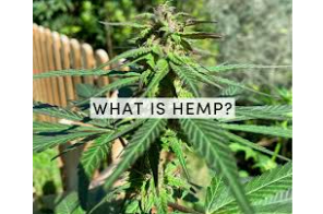 Defining Hemp: Classifications, Policies & Markets, Part 1