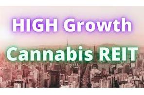 What Is A Cannabis REIT?
