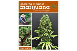 Australia: Study shows that 74% of home growers are cultivating cannabis for medical use