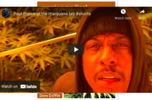 Paul Pierce hints at what's next after ESPN firing with weed factory video