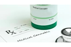 Cancer: Concurrent Use of Cannabis May Reduce Efficacy of Immune Checkpoint Inhibitors