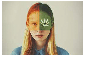 Medical Cannabis, Headaches, and Migraines: A Review of the Current Literature